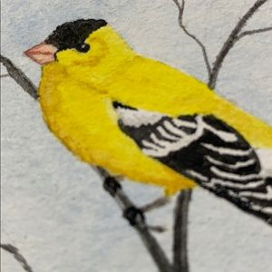 Handpainted watercolor Goldfinch By LouiseMidland